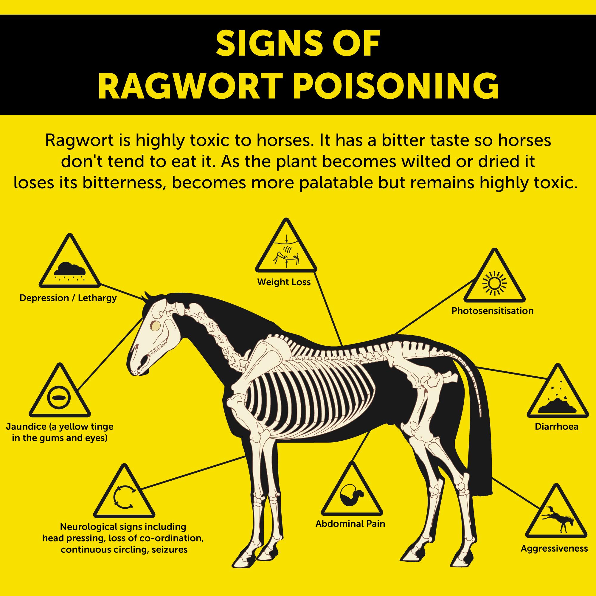 SignsOfPoisoning