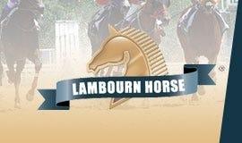 Lambourn Horse