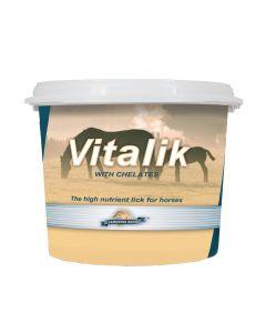 Lambourn Horse Vitalik/Flexilik