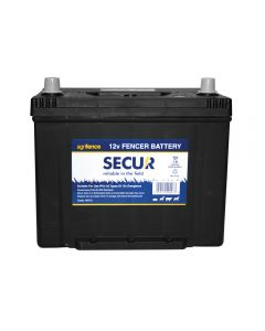 Rechargeable 12V Wet Battery