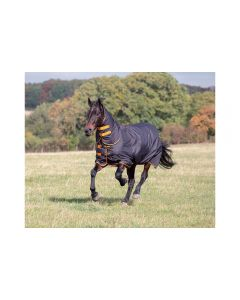 Tempest Combo Turnout Rug 200g