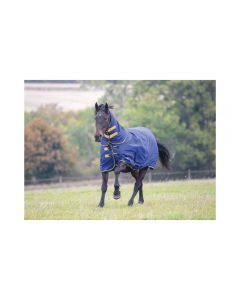 Tempest Combo Turnout Rug 300g