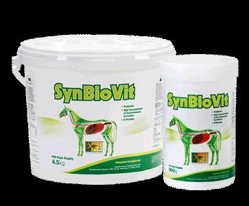 equine supplement for horses foals